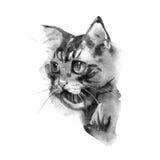 cat cute η διακοσμητική εικόνα απεικόνισης πετάγματος ραμφών το κομμάτι εγγράφου της καταπίνει το watercolor Τυπωμένη ύλη μπλουζώ Στοκ Φωτογραφίες