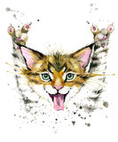 Cat. Cute cat. Watercolor Cat illustration. Stock Photography