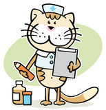 Cat -  cute veterinarian doctor Royalty Free Stock Photography