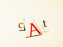 Cat - Cutout Words Collage Of Mixed Magazine Letters with White Background. Caption composed with letters torn from magazines with White Background Royalty Free Stock Photos