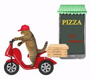 Cat delivers pizza on a moped stock illustration
