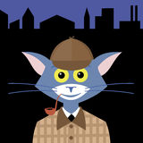 Cat detective. Cat in suit hero Sherlock Holmes on background night city Royalty Free Stock Image