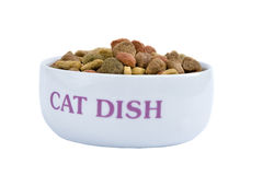 Cat dish Royalty Free Stock Photography