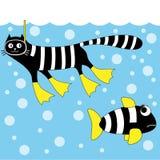 Cat diver Stock Image