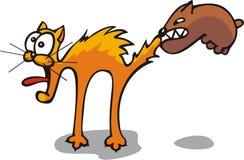 Cat&dog Stock Image