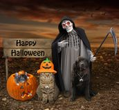 Cat Dog And Rat Near Grim Reaper Stock Photography