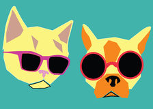 Cat and dog. In bright fashionable sunglasses Stock Photography