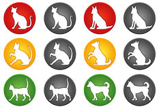 Cat and dog buttons Royalty Free Stock Photography