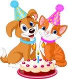 Cat and Dog celebrating Stock Images