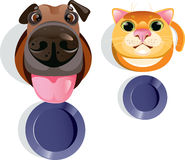 Cat, dog, food bowls. Vector illustration of funny cat and dog asking for food Stock Images