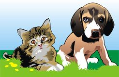 Cat and dog are friends Royalty Free Stock Photos