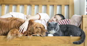 Cat and dog and girl sleeping Stock Photo