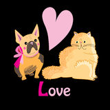 Cat and dog lovers Stock Image