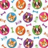 Cat & Dog pattern Stock Photos