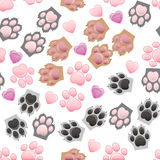 Cat and dog paw print with claws Royalty Free Stock Images