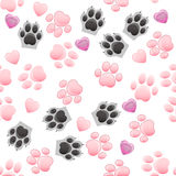 Cat and dog paw print with claws Royalty Free Stock Photo