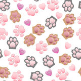 Cat and dog paw print with claws Stock Image