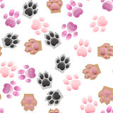 Cat and dog paw print with claws Royalty Free Stock Photography