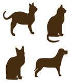 Cat dog shapes Royalty Free Stock Images