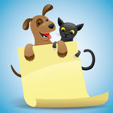 Cat and dog. Stock Photos