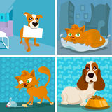 Cat and dogs cartoon set Stock Images