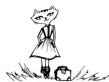 Cat in a dress with a bag . Stock Image