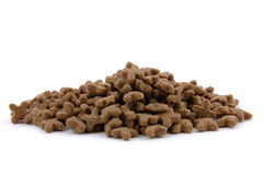 Cat dried food royalty free stock photography