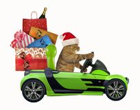 Cat drives a car with Christmas toys stock images