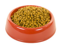 Cat Dry Food in Bowl Stock Photo