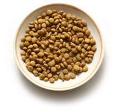 Cat dry food Stock Photos