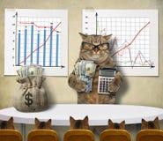 Cat economist 1 stock image