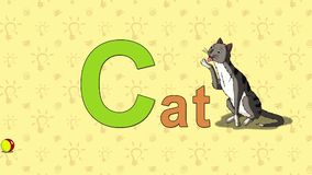 Cat. English ZOO Alphabet - letter C stock video