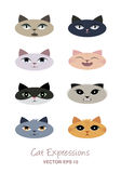 Cat expressions avatars. Cartoon style Stock Photography