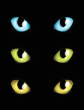 Cat eyes. In different colours Stock Image
