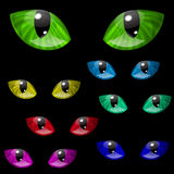 Cat Eyes Images stock