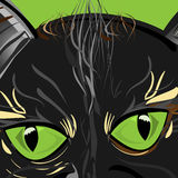 Cat Eyes Photo stock
