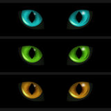 Cat Eyes on black background. Set of three elements Stock Photography