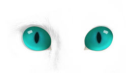 Cat eyes,cat eye. Cat eyes in the darkness stock illustration
