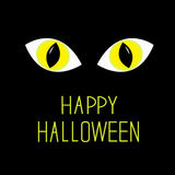 Cat eyes in dark night. Happy Halloween card. Royalty Free Stock Image