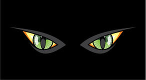 Cat eyes in dark night Royalty Free Stock Images