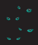 Cat eyes illustration in the dark Royalty Free Stock Images