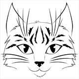Cat face  art Royalty Free Stock Images