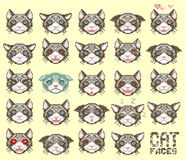 Cat face emoticon Stock Images
