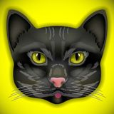 Cat, face, eyes, vector, animal, cute, kitten, bow Royalty Free Stock Images