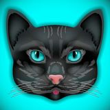 Cat, face, eyes, vector, animal, cute, kitten, bow Stock Image