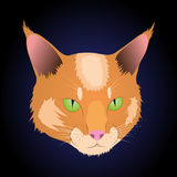Illustration of muzzle cat with green eyes on the t-shirt Stock Image