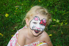 Cat face painting Stock Images