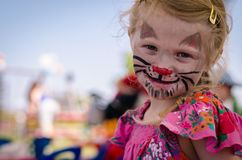 Cat face-painting Stock Images
