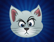 Cat face perplexed Royalty Free Stock Image