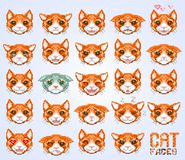 Cat faces emoticon Royalty Free Stock Image